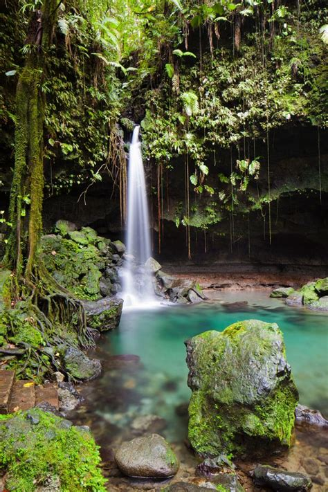 Tiny island of Dominica is the Caribbean's best kept